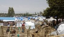 RDC : 23 morts dans les combats entre militaires et miliciens à Djugu