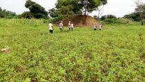Aide  aux réfugiés centrafricains par Caritas dans le  Nord-Ubangi, en RD. Congo : Bonne impression et Satisfaction après  la récente mission de suivi du  Projet AA Molegbe