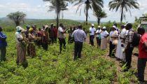 Afrique: 5 Caritas nationales ont échangé sur la sécurité alimentaire autour de la Caritas Norvège à Kinshasa