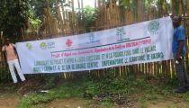 Equateur : la communauté dépendante de la forêt du territoire de Bikoro impliquée dans l'agroforesterie et à la pisciculture