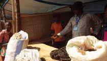 RDC : Clôture de la Foire agricole de Gemena avec interpellation de Caritas Congo Asbl aux producteurs agricoles et autres travailleurs de la terre