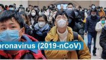 675 millions USD sont requis pour le plan mondial de préparation et de riposte pour lutter contre le nouveau coronavirus