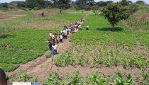 Journée Mondiale des Réfugiés : Caritas Congo Asbl a « partagé le chemin » avec des réfugiés centrafricains