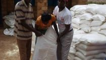 Kasaï Central: Caritas distribue des vivres, outils aratoires et semences maraichères à 2.037 ménages à Luiza