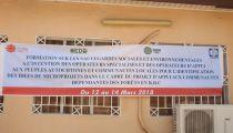 Les Opérateurs du Projet d'Appui aux Communautés Dépendantes de la Forêt en RDC à l'école des sauvegardes sociales et environnementales
